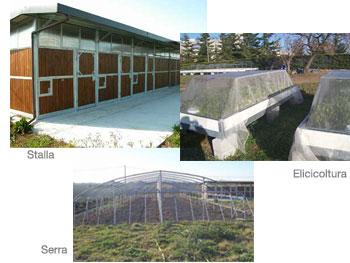 Foto del centro polifunzionale - Stalla, allevamento delle chiocciole e serra